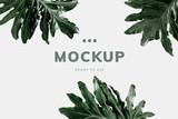 Philodendron xanadu leaf mockup - 247492207