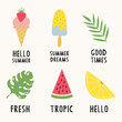 Summer illustrations with ice cream, watermelon, tropical leaves and lemon. Vector isolated summertime design. - 247517478