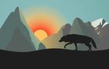 Silhouette of Wild Wolf. Sunset or Sundown in Mountains.