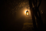 Beautiful colorful illuminated lamp in the garden in misty night. Retro style lantern at night outdoor. - 247540838