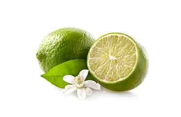 Limes with blossom on the white background
