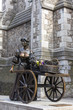 Molly Malone in Dublin, Irland - 247586603