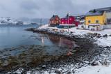 paese di pescatori in inverno, norvergia - 247601667