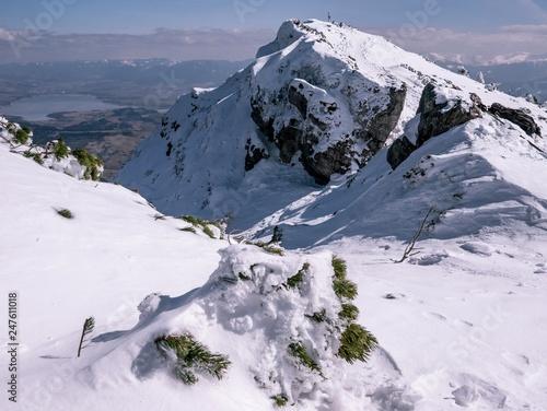 fototapeta na ścianę Beautiful panorama of rocky mountains in winter, with frozen green twig