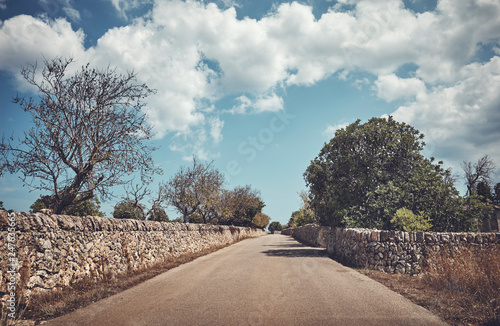 Foto Murales Color toned picture of a countryside road between stone walls, Mallorca, Spain.