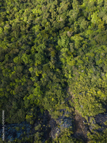 Aerial view of Black river Gorges Viewpoint Mauritius. - 247650446