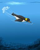 A penguin swimming underwater
