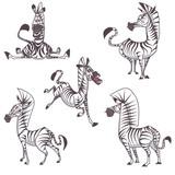bundle pack funny zebra cartoon
