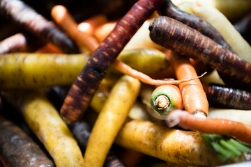 Fresh organic vegetables food photography