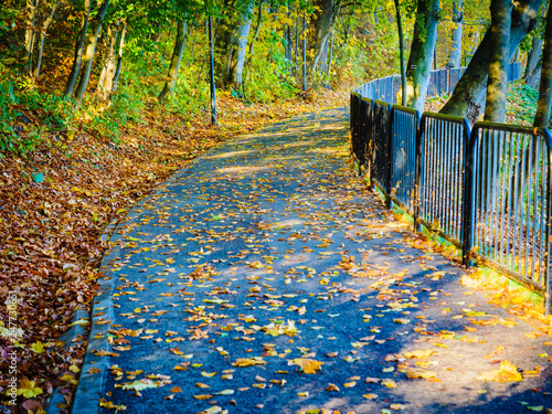 Bridge in autumn park - 247730651