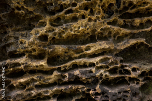 canvas print picture Sandstein, Detail, Schrammsteine, Nationalpark Saechsische Schweiz, Elbsandsteingebirge, Sachsen, Deutschland