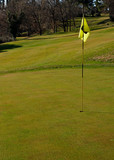 Golf course with hole and flag on a sunny day