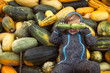 Leinwandbild Motiv Portrait of the happy little boy who is lying on the pumpkins outdoors and holding zucchini in hands on his eyes