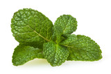 Fresh spearmint leaves isolated on white background - 247786446