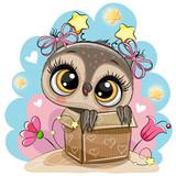 Birthday card with Cartoon Owl girl and a box