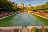 Cordova. Royal palace of the cristian kings - 247829263