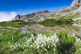 Lac de Peyre - 247858800
