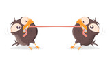 funny cartoon birds fighting for a worm - 247864210