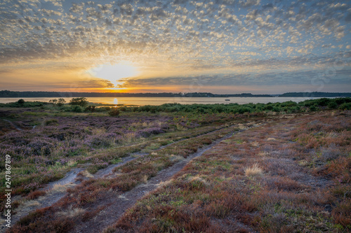 Beautiful sunset over bay and heathland with heather