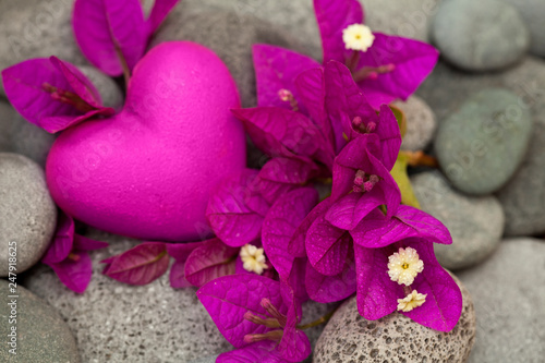 Bright Pink Bougainvillea Flowers And Heart © Sunnydays