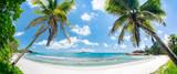 Tropischer Palmenstrand in der Südsee mit Blick aufs Meer - 247983059