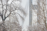 Pylon and cable-braced of Southern cable-stayed bridge across the Dnipro river in Kyiv, Ukraine. Winter is cloudy weather. - 247998085