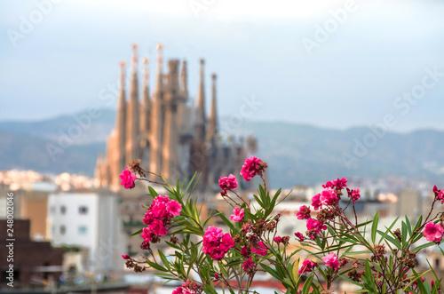 mata magnetyczna Sagrada Familia in Barcelona. Sagrada view with flowers