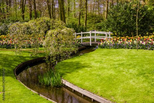 Colourful  Spring Formal Garden - 248002627