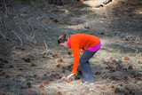 Adult woman bends over, picking up a large Jeffrey Pine Cone in a field in Mammoth Lakes California. - 248010404