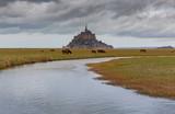 Abbey fortress Mont Saint Michel. - 248014029