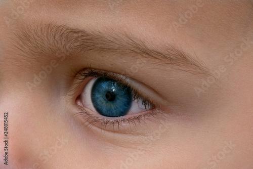 Blaues Kinder Auge - 248015452