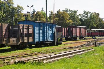 Narrow-gauge railway in Znin. Poland