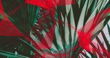 Palm Leaves. Geometric Abstract design. Polygonal tropical background. - 248034281