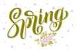 Hand drawn lettering Spring with shadow and highlights, flower elements. Elegant handwritten calligraphy card. Vector Ink illustration. Typography poster. For cards, invitations, prints etc