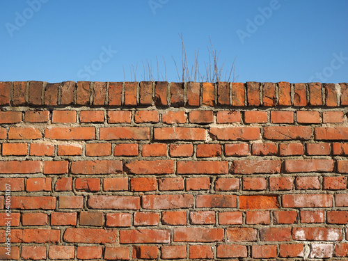 red brick wall background - 248051007