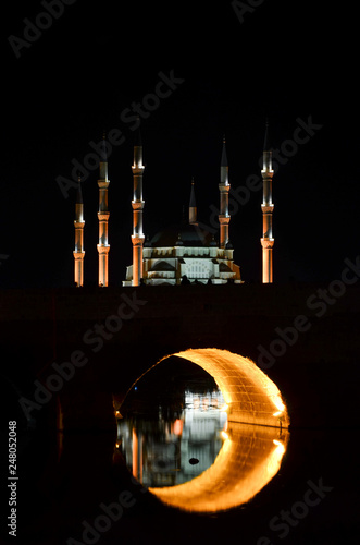 City of Adana, Turkey. Sabanci Central Mosque in Adana with Seyhan River and Trees. Mosque has reflection from Seyhan river at night - 248052048