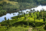 Hills , lake and tee plantations in Kerala
