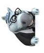 Fun horse - 3D Illustration - 248106659