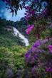 Cachoeira dos Pretos, São Paulo, Brazil - 248141640