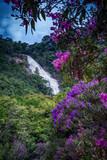 Cachoeira dos Pretos, São Paulo, Brazil