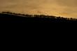 impressive sunset and contrasty landscape -2