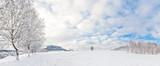 Winter am Pfaffenstein