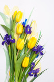 Beautiful flowers for a postcard. March 8.