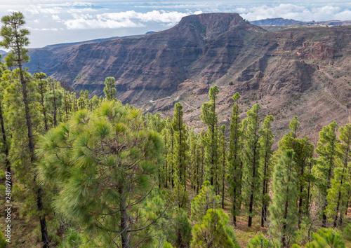 landscape in the la gomera mountains
