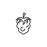 Raspberry fruit line icon. linear style sign for mobile concept and web design. Raspberry berry food outline vector icon. Symbol, logo illustration. Pixel perfect vector graphics