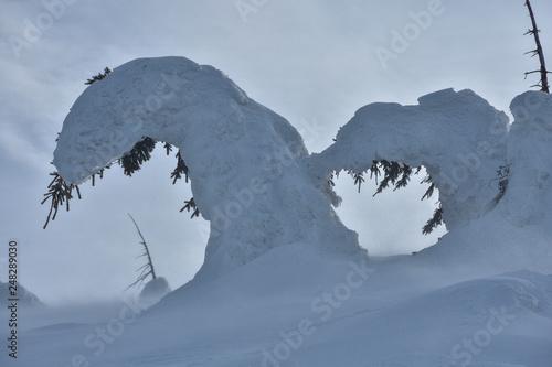 Pod ciężarem śniegu: góry Karkonosze