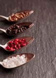 Spices and salt assortment on metal spoons - 248294490