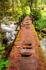 Broken and old wooden bridge over a stream in Tatras © shaiith