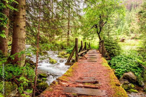 Old and broken wooden bridge over a stream in Tatras