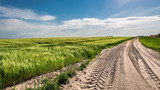 Green field with country road in sunny day - 248305484